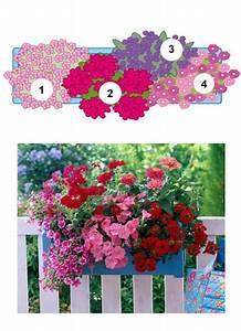 Künstliche Blumen Für Balkonkästen : balkonblumen fantasievoll kombiniert balkon blumen ~ A.2002-acura-tl-radio.info Haus und Dekorationen