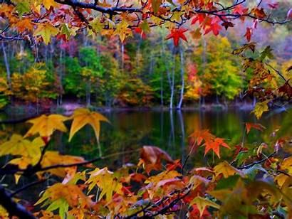 Autumn Desktop Leaves Frame Nature Wallpapers Frames