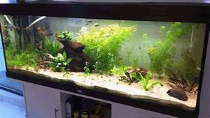 Idee Decoration Aquarium : id e d co aquarium 50l ~ Melissatoandfro.com Idées de Décoration