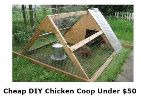 how to build a cheap chicken coop cheap diy chicken coop for under 50 youtube