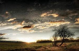 sunset, on, farm