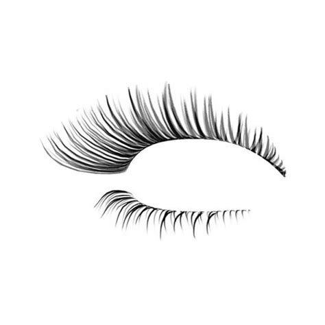 eyelash template eyelash photoshop template designs liked on polyvore featuring makeup doll parts dolls