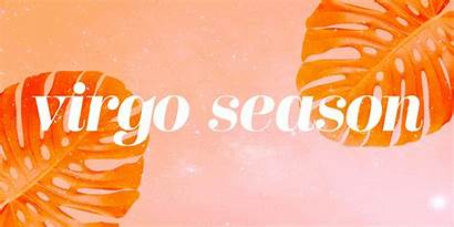 Virgo Season Know Officially Need Wstale Lifestyle