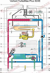 Vaillant Turbomax Wiring Diagram