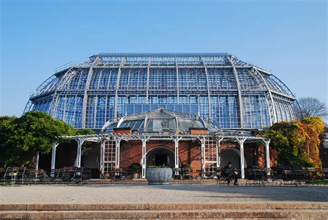 Botanischer Garten Berlin Großes Tropenhaus by Berlin Botanischer Garten Gro 223 Es Tropenhaus 1907 Foto