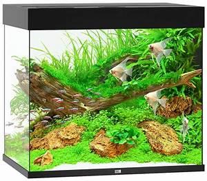 L Form Aquarium : juwel aquarien aquarium lido 200 led b t h 71 51 65 cm 200 l in 4 farben online kaufen otto ~ Sanjose-hotels-ca.com Haus und Dekorationen