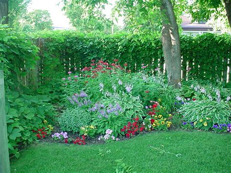 perennial shade garden bagley landscapes color