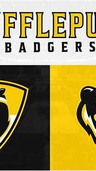 Hufflepuff Badgers | Hogwarts Basketball Alliance by Dan ...