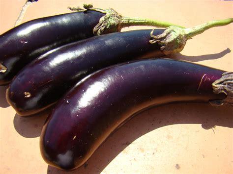 cuisiner les aubergines valy christine océany archives du je suis à la