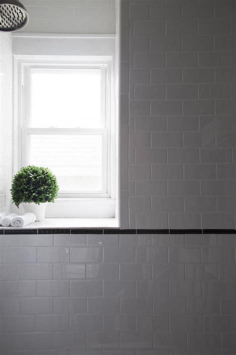 bathroom plant options window plants tile windowsill frame interior simple wall ceramic modern topiary sill shower decor ledge idea natural