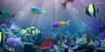 Paper Ocean Live Wallpaper Apk by Aquarium Live Wallpaper Android Apps On Google Play