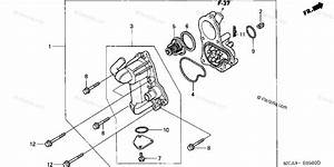 Honda Motorcycle 2004 Oem Parts Diagram For Water Pump