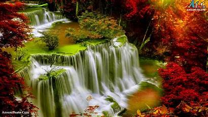 Nature Wallpapers Morning Screen Pc Animals Backgrounds