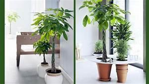 Grande Plante Artificielle : grande plante verte ~ Teatrodelosmanantiales.com Idées de Décoration