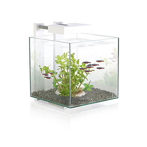 accessoires aquarium pas cher