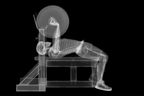 posture desk jockey guide office stretch skeleton problems hunching upper job solved injury compensate strengthen bench injuries getty press