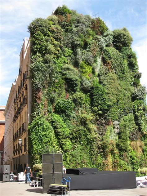 What Are Vertical Gardens by Bensozia Blanc S Vertical Gardens