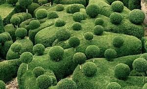 Topiarieshedgesand mazesespaliers 889 for Marqueyssac topiary gardens philippe jarrigeon