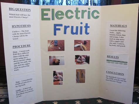 Science Fair Project Ideas For 5th Gradewritings And