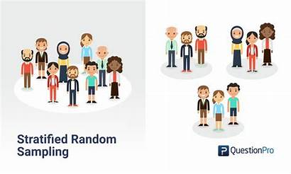 Sampling Stratified Random Probability Method Definition Examples