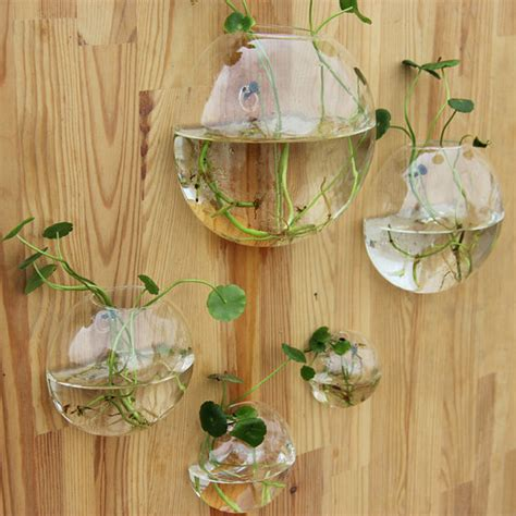 5pcsset Wall Planter Glass Vase,wall Fish Tank For Home