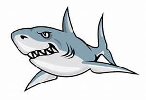 Cartoon Angry Shark Stock Illustrations, Vectors ...