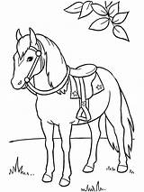 Coloring Pages Horse Horses Animals Printable Print sketch template