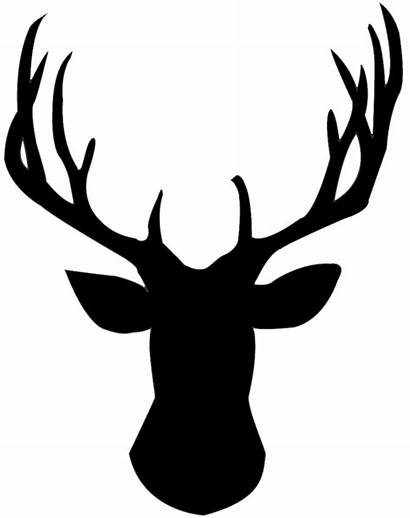 Clipart Skull Stag Deer Transparent Silhouette Fish