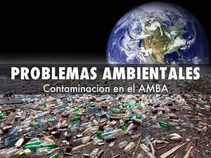 Problemas Ambientales By Facundo Acu U00f1a
