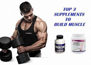 Muscle Palace  The 3 Best Muscle Building Supplements