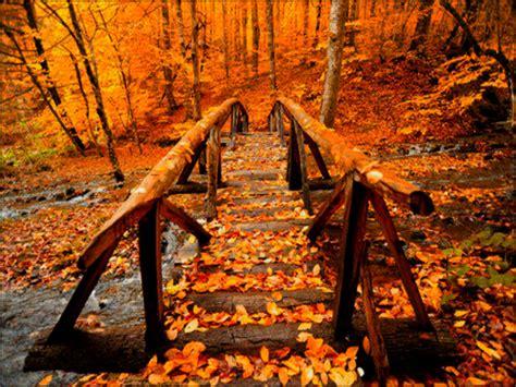 Aesthetic Cozy Fall Backgrounds Desktop by Autumn Autumn Wallpaper 32361003 Fanpop