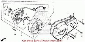 Honda Xr100r 1991  M  Usa Left Crankcase Cover 85-91