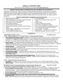 sle resume objective statements for management 8 business analyst resumes free sle exle format free business analyst cv sle template
