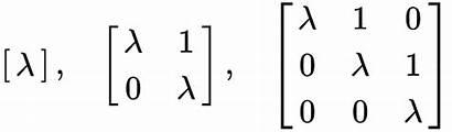 Matrix Form Jordan Block Diagonal Matrices Example