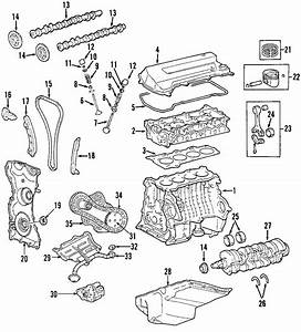 Ford Focus Engine Mount  Trans  Auto
