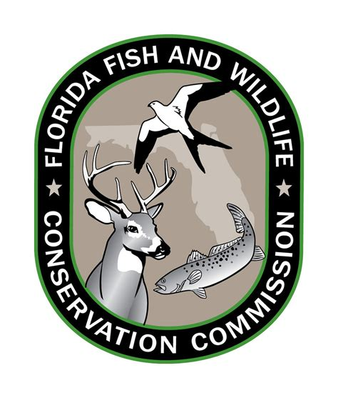 fwc florida fish wildlife conservation commission myfwc flickr freshwater fishing fisheries county gag grouper logos boat fl fire bay committee