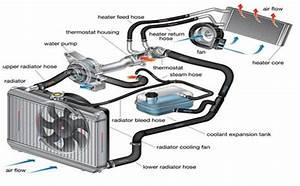 How To Perform A Toyota Corolla Coolant Flush  1993 U20132002