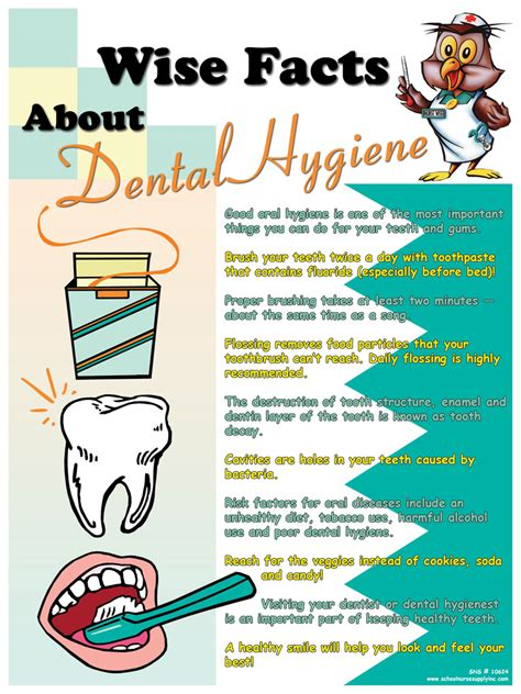 wise facts  dental hygiene poster