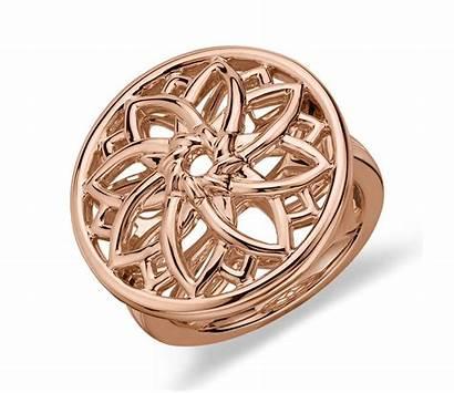 Ring Gold Medallion Rose Sunburst 14k Nile
