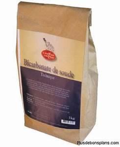 Bicarbonate De Soude Technique : bicarbonate de soude poudre blanche aux bienfaits ~ Dailycaller-alerts.com Idées de Décoration