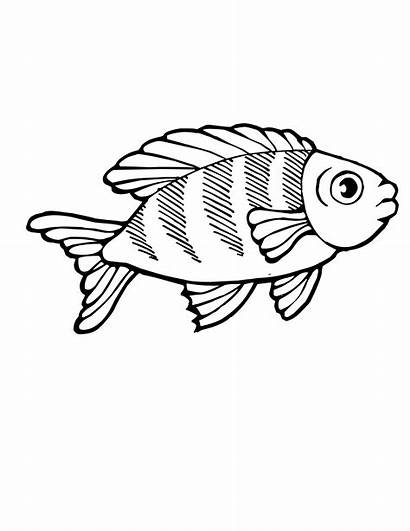 Coloring Pages Fish Tropical Koi Clipart Printable