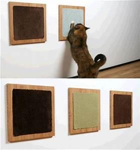 10 diy pour les chats cocon de decoration le blog With tapis jonc de mer avec housse canapé lycksele ikea