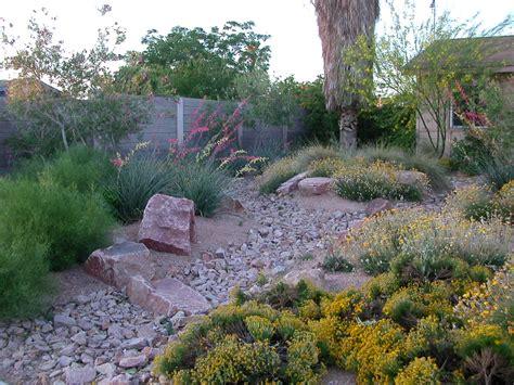 arid landscape design extreme gardening designing with desert plants southwest trees and turf