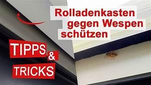 Mittel Gegen Wespen Im Rolladenkasten : rolladenkasten gegen wespen sch tzen und abdichten youtube ~ Frokenaadalensverden.com Haus und Dekorationen