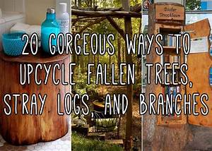 These DIY Projects Made From Upcycled Fallen Trees Will