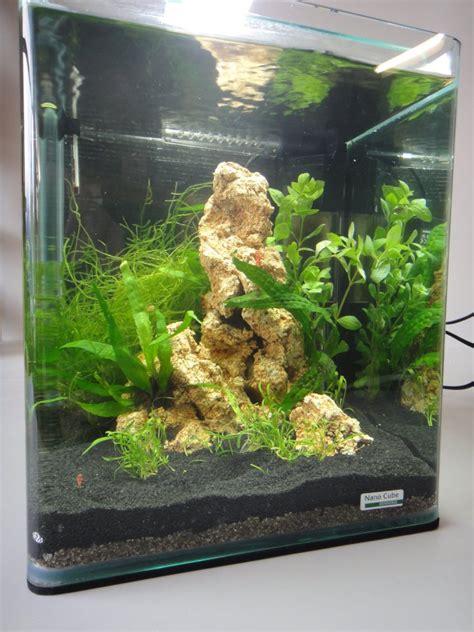 decorer un aquarium vide d 233 coration aquarium nano