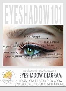 Makeup 101  Eyeshadow Diagram For Makeup Newbies