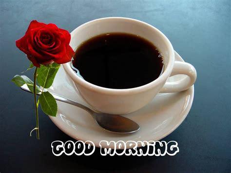Εικόνες για Καλημέρα Coffee Pods Online Grinders Liqueur Creamers Regina Mocha Mate Nutrition Usa London Ontario