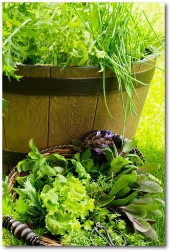 small vegetable garden plans  ideas