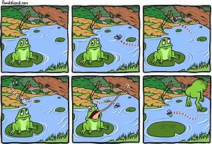 Frog Vs. Annoying Fly In Comic By Pandyland
